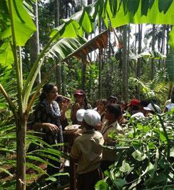 Atreya Vedic Farm