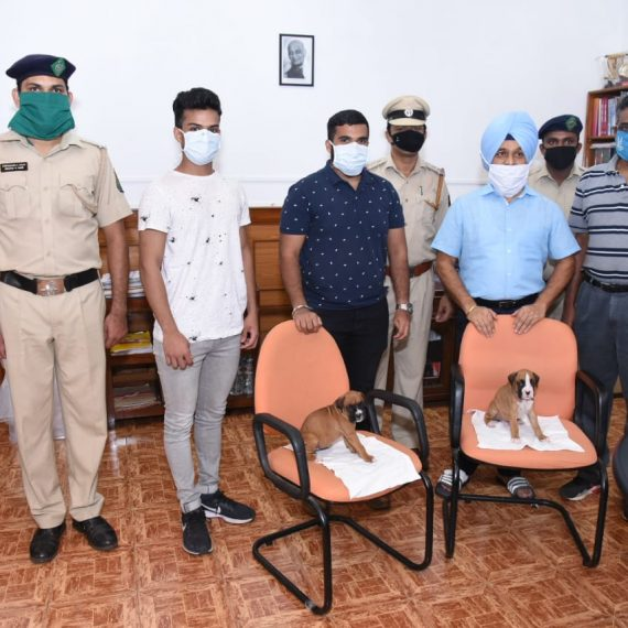 Shri Curt and Shri Rolt Coutinho Navelim donated a pure boxer breed one month old puppy to the Dog squad of the Goa Police in the presence of Inspector General of Police Shri Jaspal Singh,IPS, Superintendent of Police Shri Bosco George, IPS at Goa Police Head Quarters today, May 1, 2020