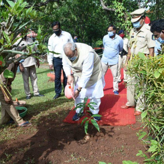 Governor of Goa, Shri Satya Pal Malik planted a Mancurad Mango Sapling on the Occasion of World Environment Day at Raj Bhavan, Donapaula on June 6, 2020.